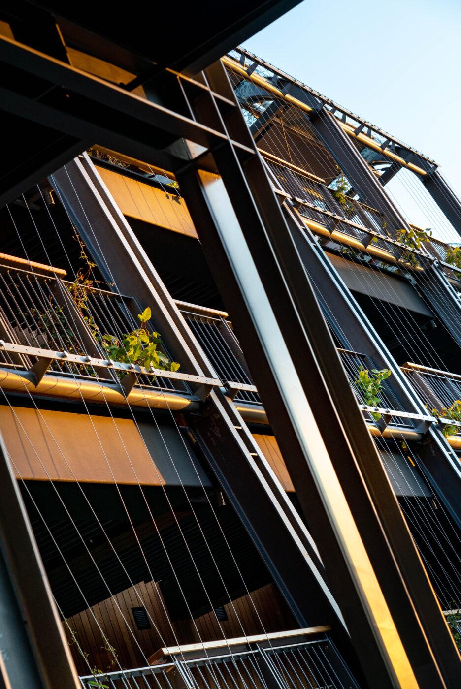 Steel Picket Balustrades | The Wildlife Retreat Taronga Zoo | Active Metal 04