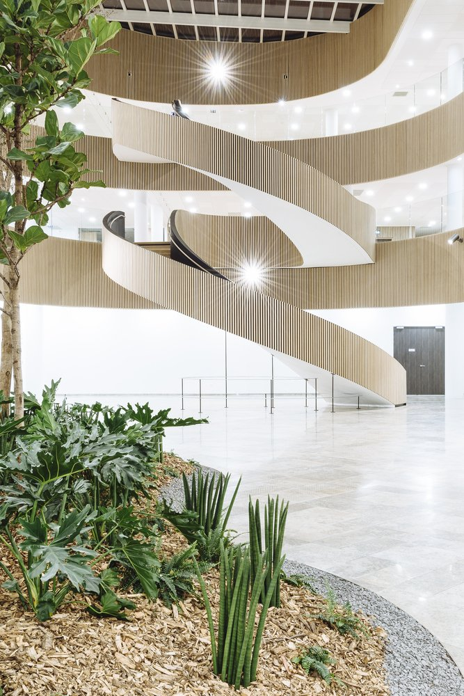 Architectural Stairs - The Biotope